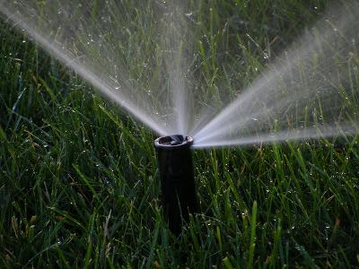 Rasen Sprengen 5 Tipps Zum Bewässern Jobruf